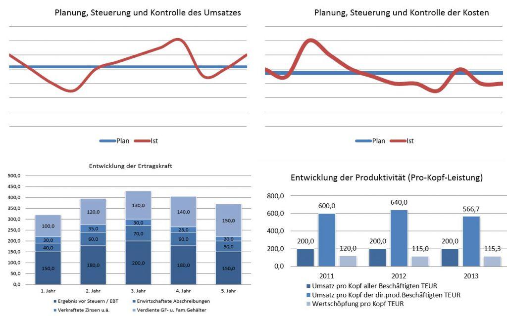 Consulting - Planung, Steuerung und Kontrolle der Kosten
